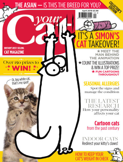 Your Cat Magazine March 15, 2019 00:00