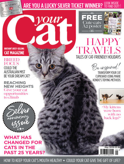 Your Cat Magazine April 13, 2019 00:00