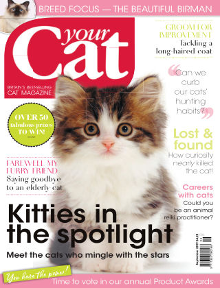 Your Cat Magazine September 2019