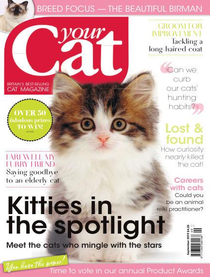 Your Cat Magazine August 15, 2019 00:00