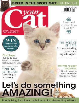 Your Cat Magazine October 2019
