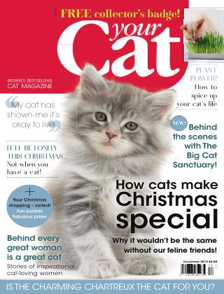 Your Cat Magazine December 2019