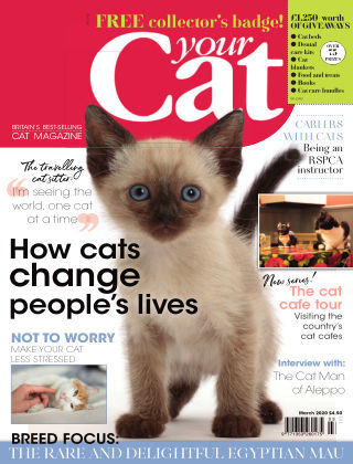 Your Cat Magazine March 2020