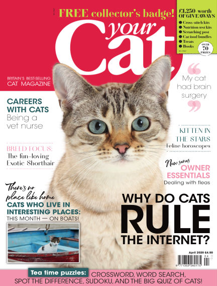 Your Cat Magazine March 13, 2020 00:00