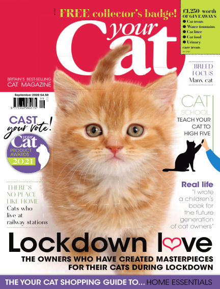 Your Cat Magazine August 14, 2020 00:00