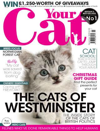 Your Cat Magazine November 2020