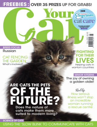 Your Cat Magazine May 2021