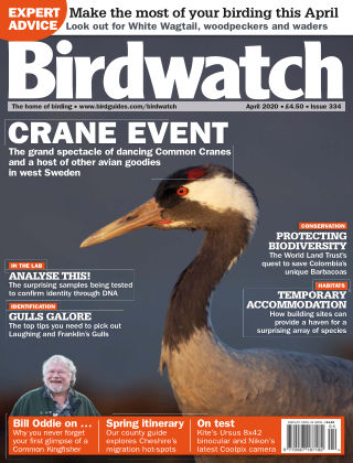 Birdwatch ISSUE334APRIL2020