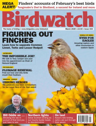 Birdwatch ISSUE333MARCH2020