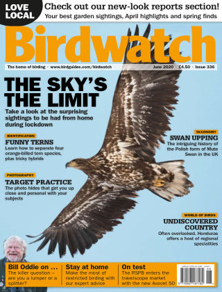 Birdwatch ISSUE336JUNE2020