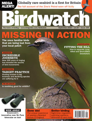 Birdwatch ISSUE339 SEPT 2020