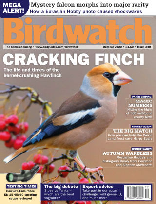 Birdwatch ISSUE340OCTOBER2020