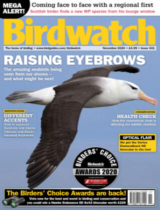 Birdwatch ISSUE341NOVEMBER2020