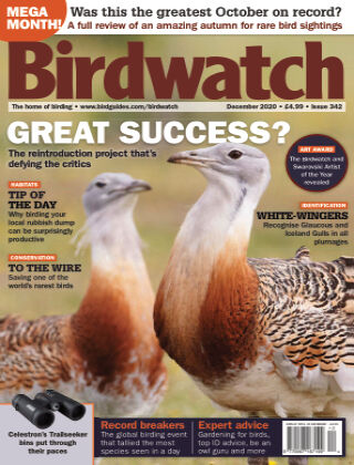 Birdwatch ISSUE342DECEMBER2020