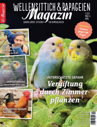 WP-Magazin Wellensittich & Papageien 02/2021