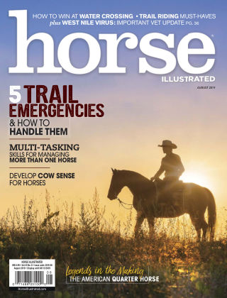 Horse Illustrated Aug