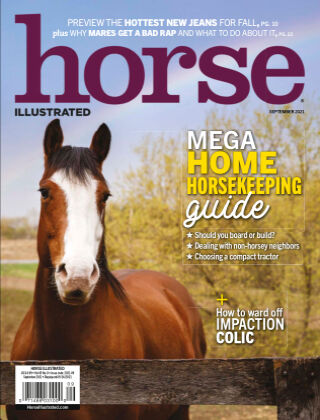 Horse Illustrated Sept