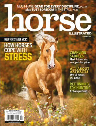 Horse Illustrated Oct