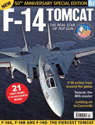Modern US Mil Aviation f14_tomcat