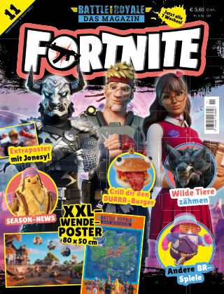 Fortnite / Battle Royale: Das Magazin 11/2021