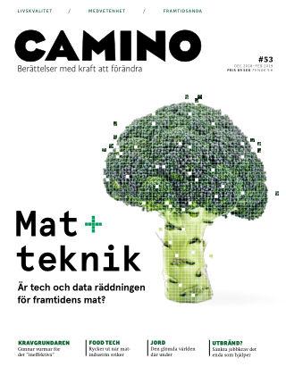 Camino  2018-11-23