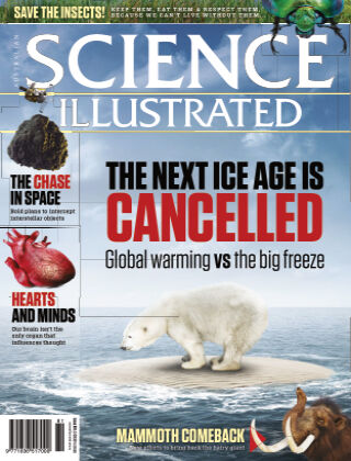 Science Illustrated Issue 81