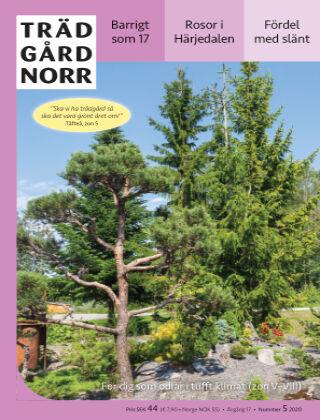 Trädgård Norr 2020-11-16