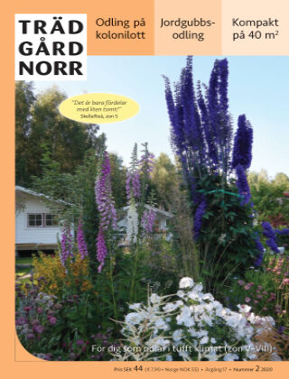 Trädgård Norr 2020-03-27