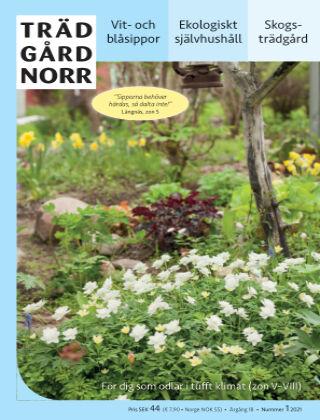 Trädgård Norr 2021-01-29