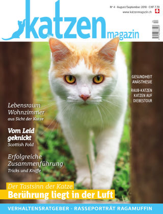 Katzen Magazin 4/18