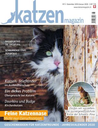 Katzen Magazin 6/19