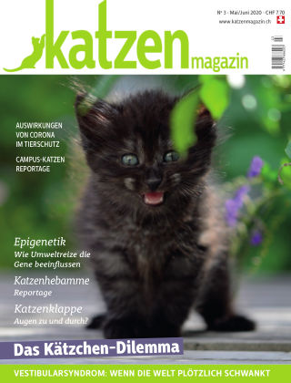 Katzen Magazin 3/20