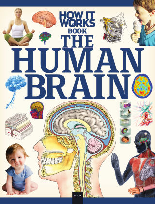 How It Works Book of the Human Brain 2nd Edition