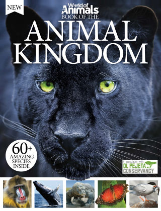 World Of Animals Book of the Animal Kingdom 3rd Edition