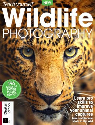 Teach Yourself Wildlife Photography Third Edition