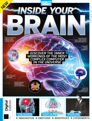 Inside Your Brain 1st Edition