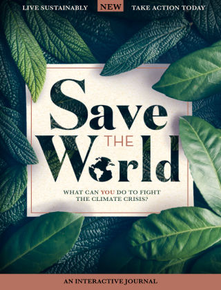 Save The World 1st Edition