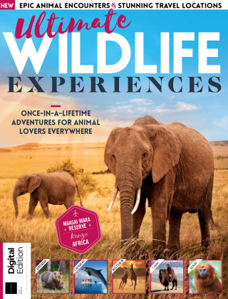 Ultimate Wildlife Experiences 1st Edition