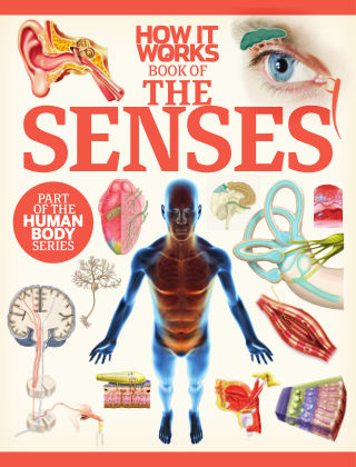 How It Works Book of the Senses First Edition