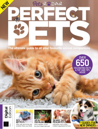 World of Animals Book of Perfect Pets Third Edition