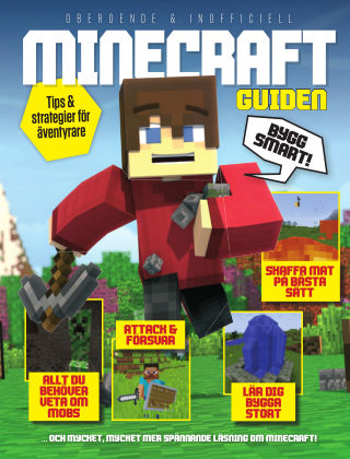 Minecraft (SE) 2017-05-09
