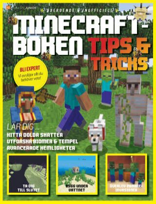 Minecraft (SE) 2020-10-30
