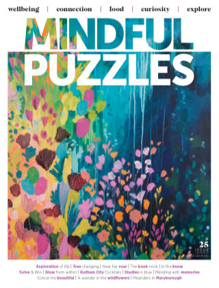 Mindful Puzzles Issue 025